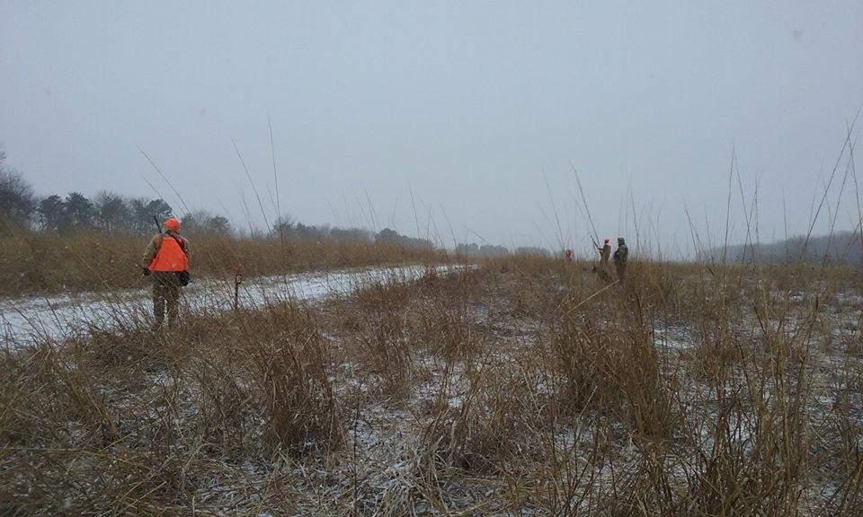 Upland hunt combo